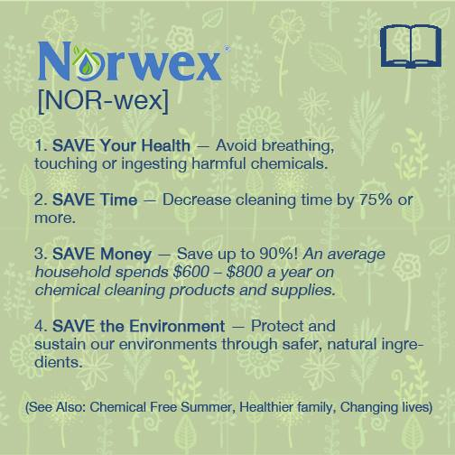 Norwex Party Invitation with amazing invitation example
